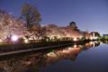 『京都新聞写真コンテスト 池のほとりの夜桜』
