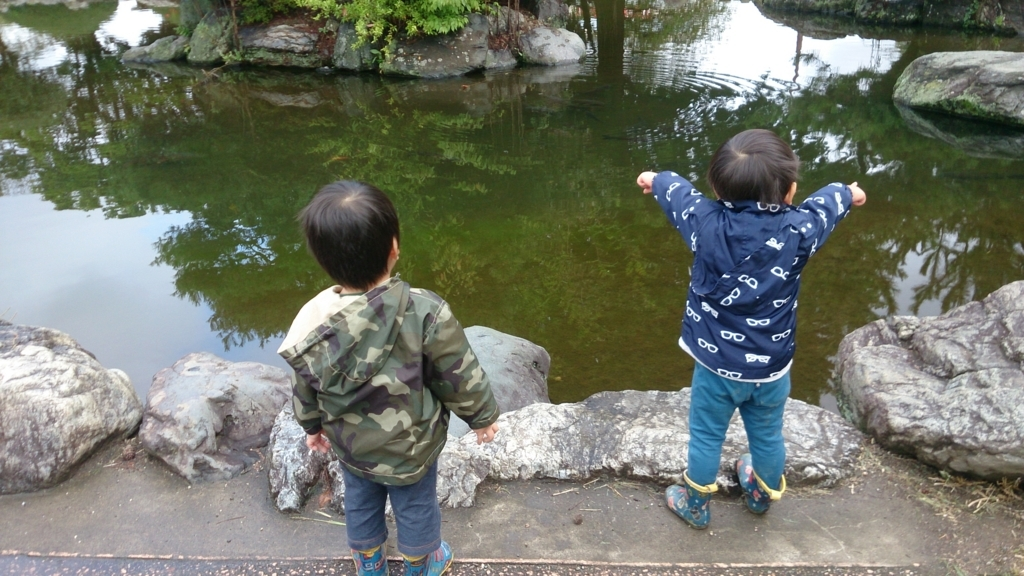 f:id:gyoda-nozomi:20171017152657j:plain