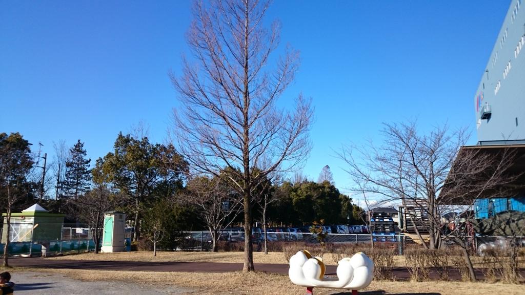 f:id:gyoda-nozomi:20180109150021j:plain