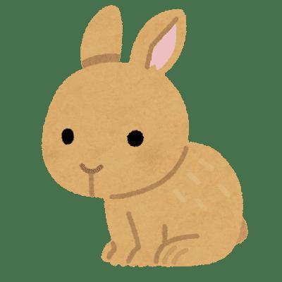 """""""ウサギさん/"""