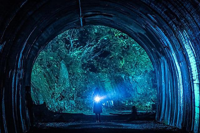 【ネタバレあり】映画【犬鳴村】感想&考察!都市伝説の解釈としては素晴らしい名作!