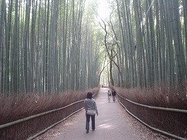 https://cdn-ak.f.st-hatena.com/images/fotolife/g/gyuuhomura/20010101/20010101000040.jpg