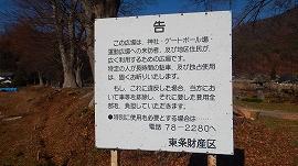 f:id:gyuuhomura:20191230122130j:plain