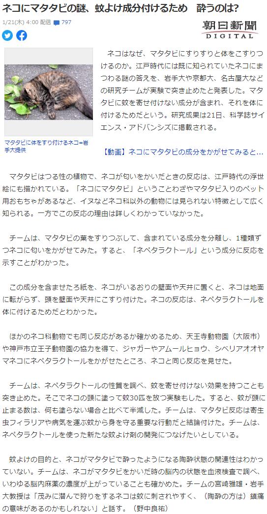 f:id:gyuuhomura:20210121110921p:plain