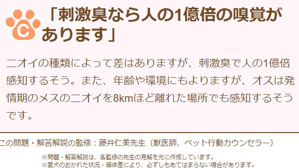 f:id:gyuuhomura:20210121121312p:plain