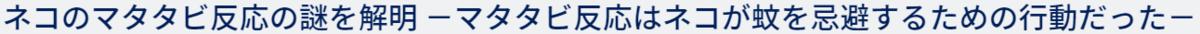 f:id:gyuuhomura:20210121231417p:plain