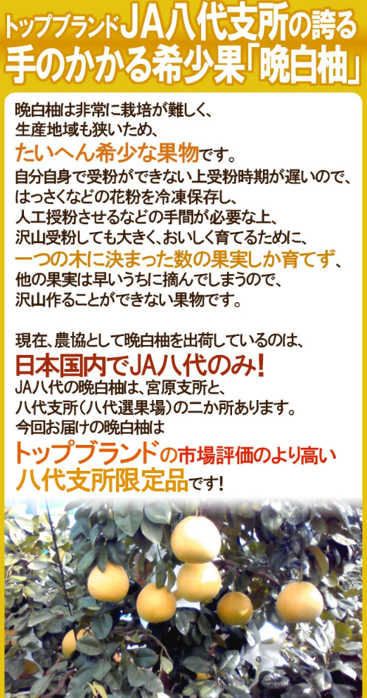 f:id:gyuuhomura:20210616230634p:plain