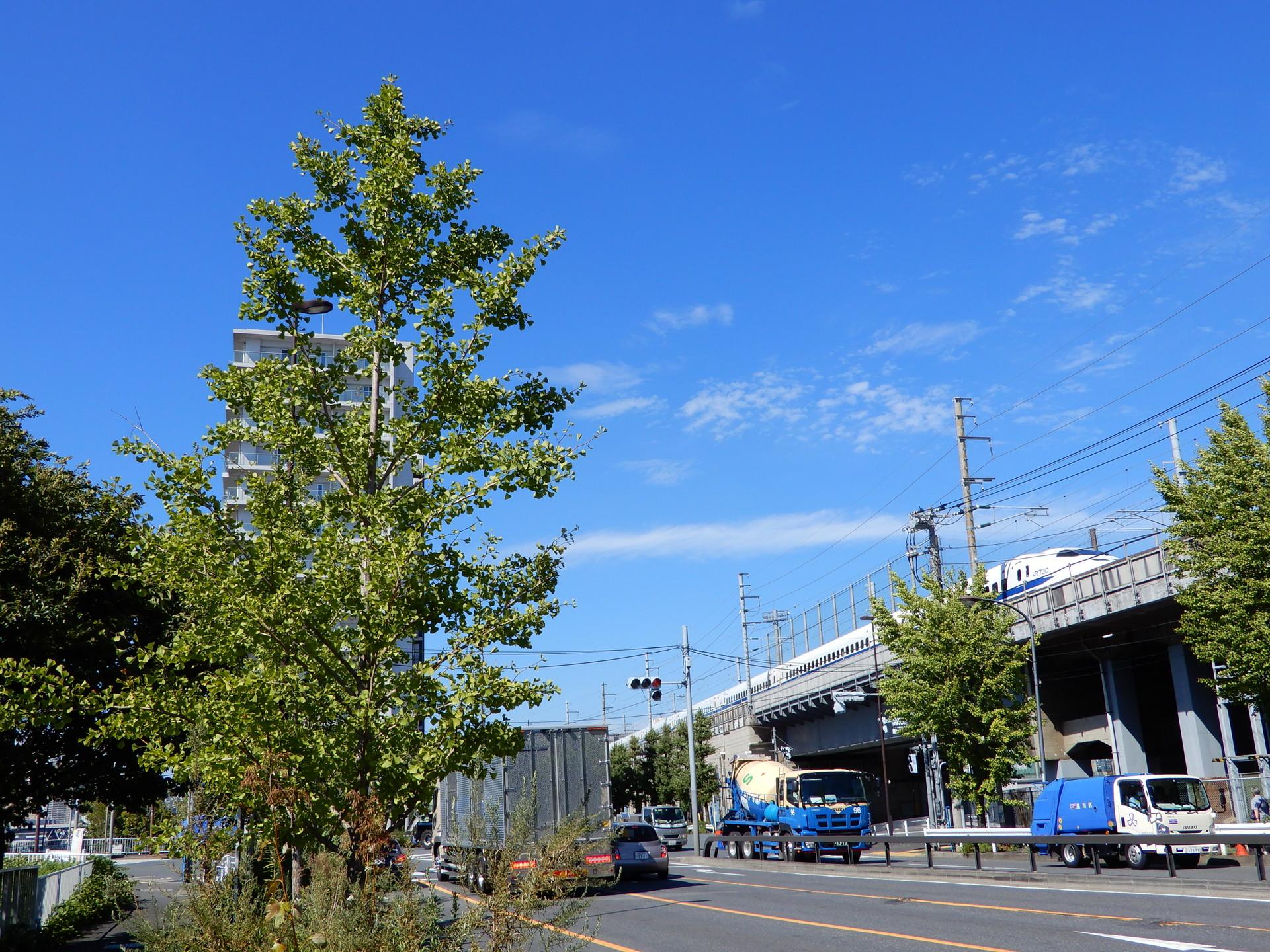 東海道新幹線の回送線