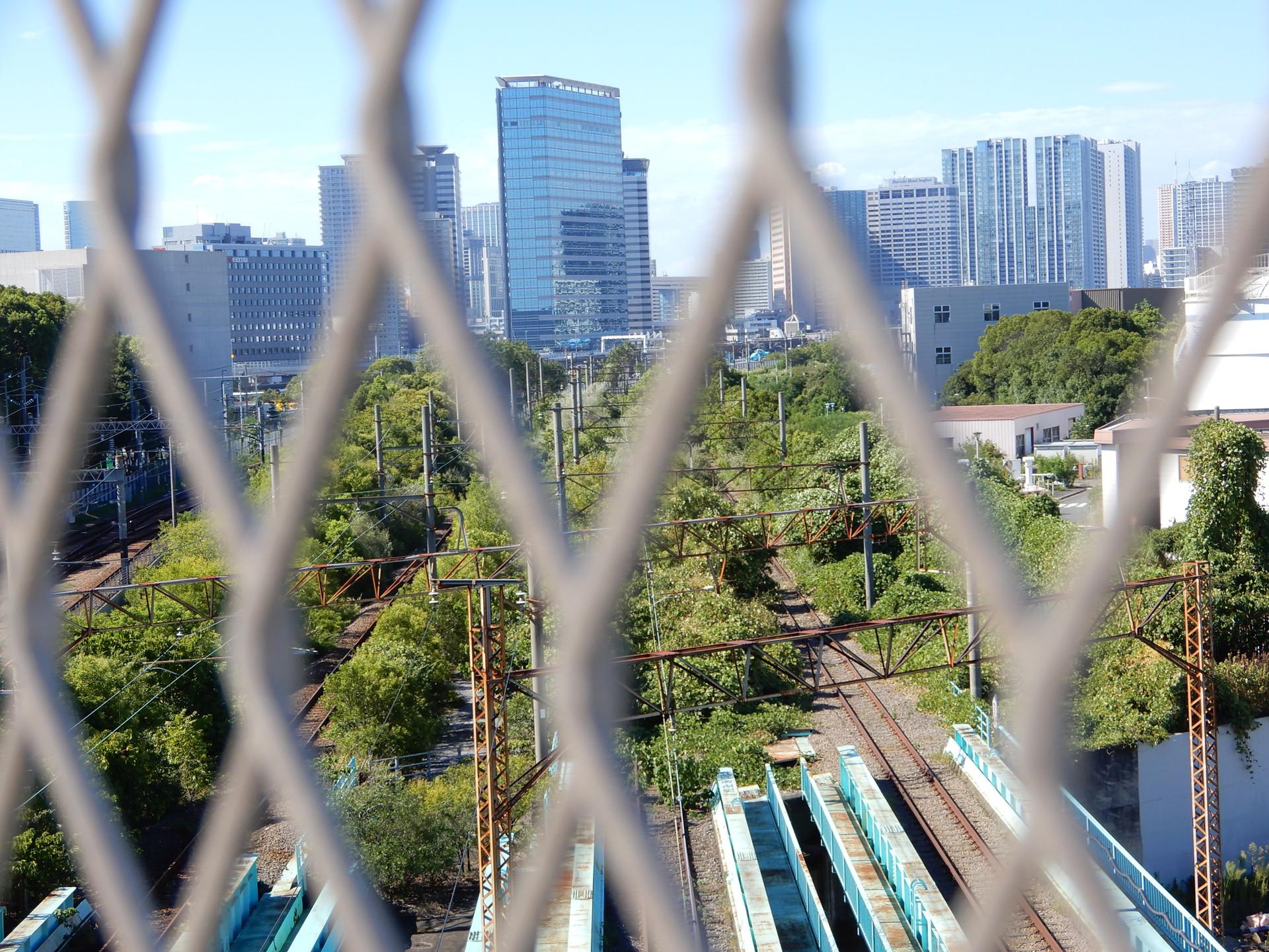 フェンス越しの線路