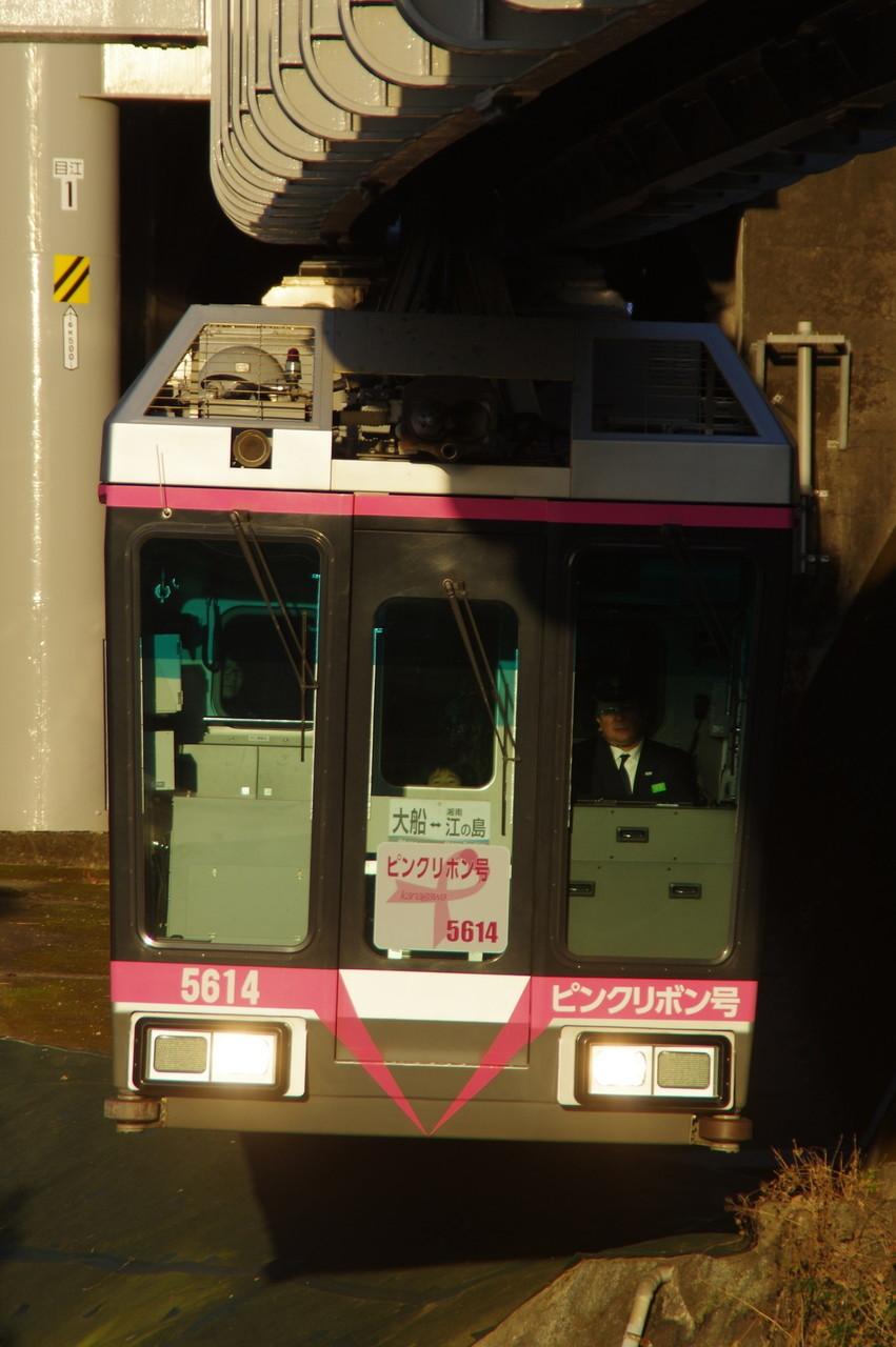 5613編成 (ピンクリボン号)