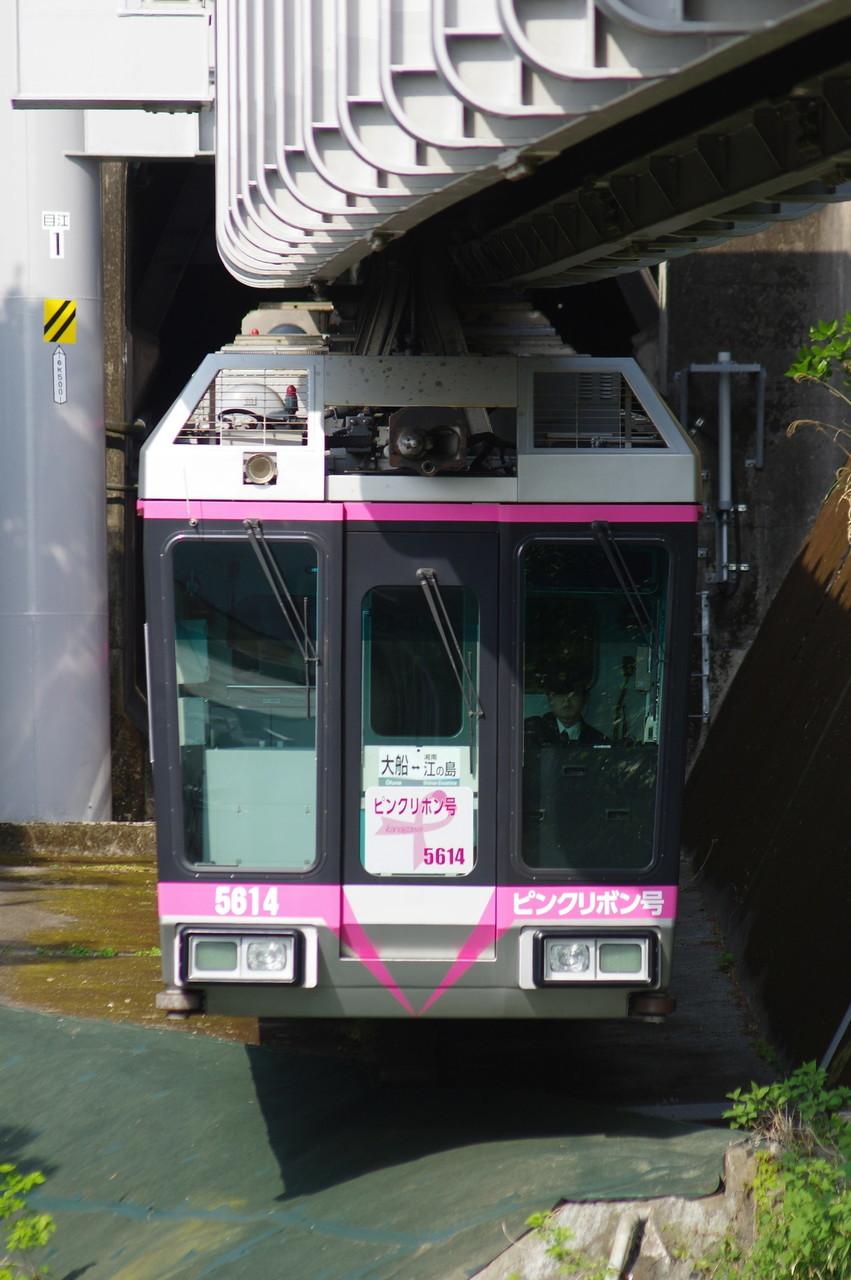 5000系5613編成 ピンクリボン号