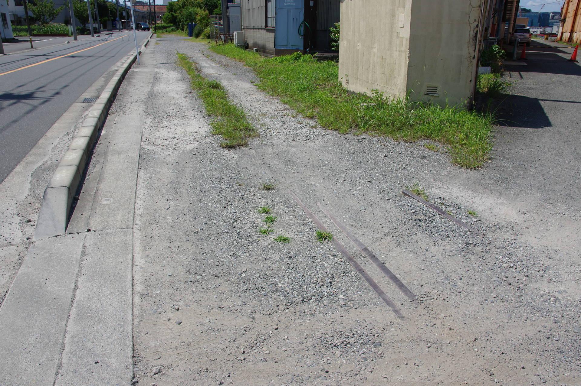 砂利に埋もれかけた踏切跡と、直線的に生える草