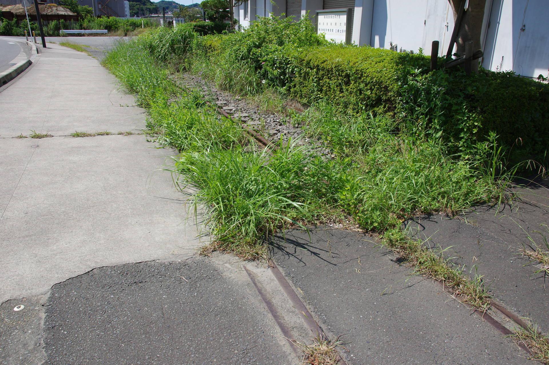 レールの際までコンクリートが流し込まれている部分