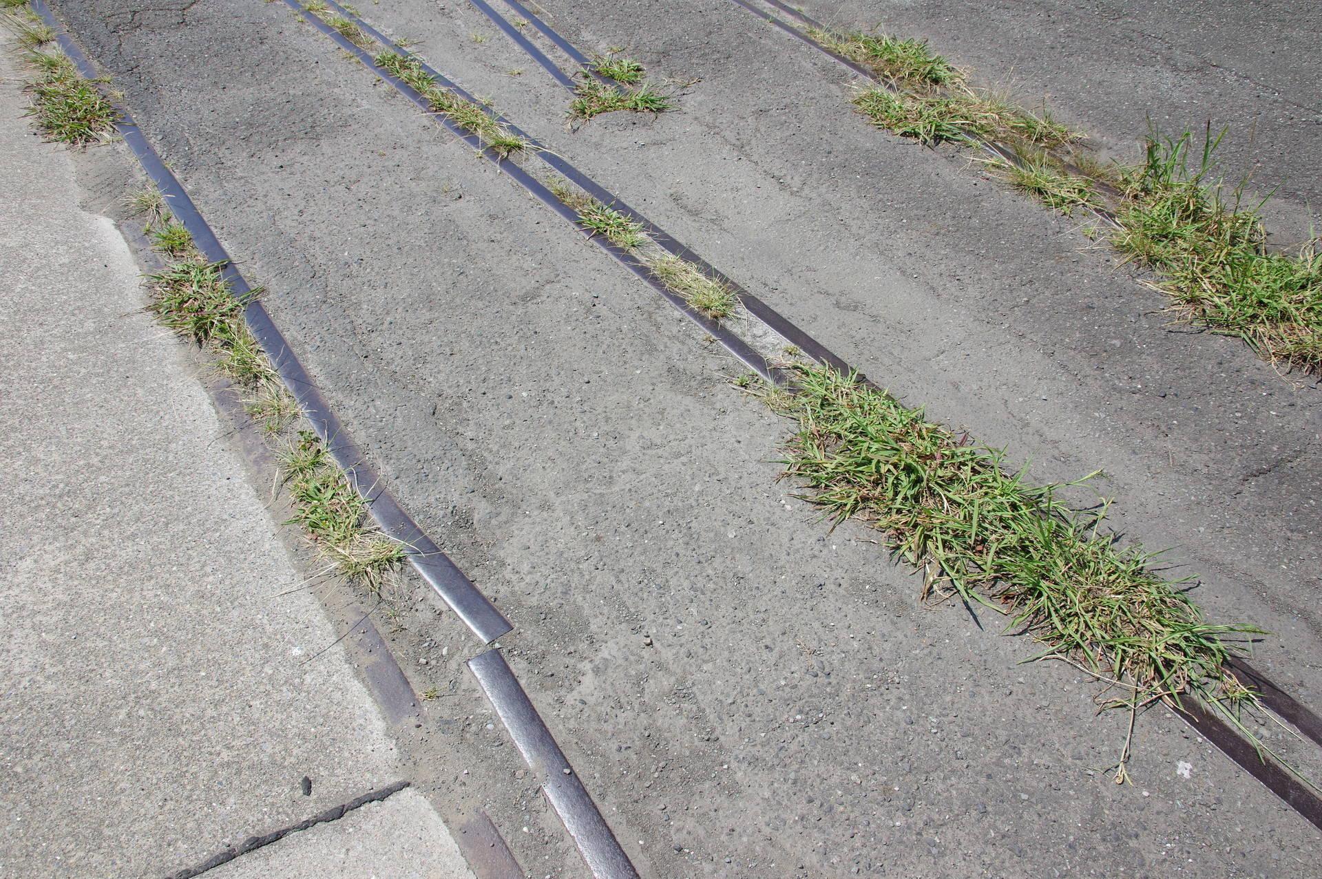 脱線防止ガードが歪んでいる部分
