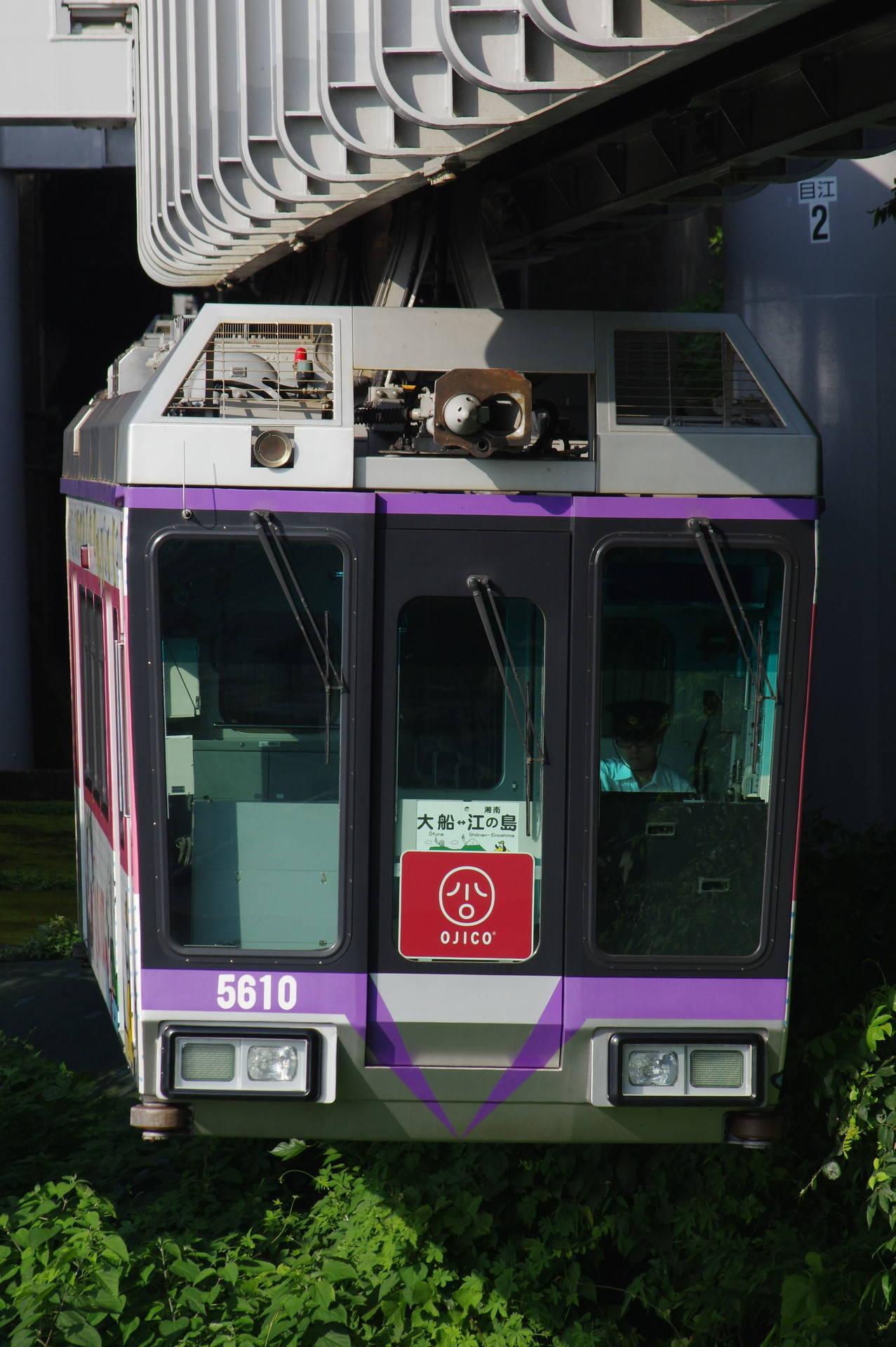 5000系5609編成 「OJICOトレイン」