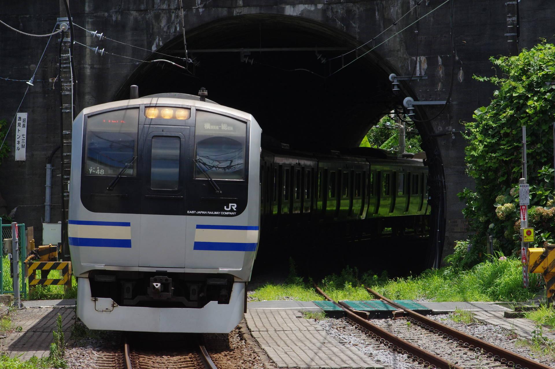 逸見トンネルを抜けて横須賀駅に差し掛かるE217系