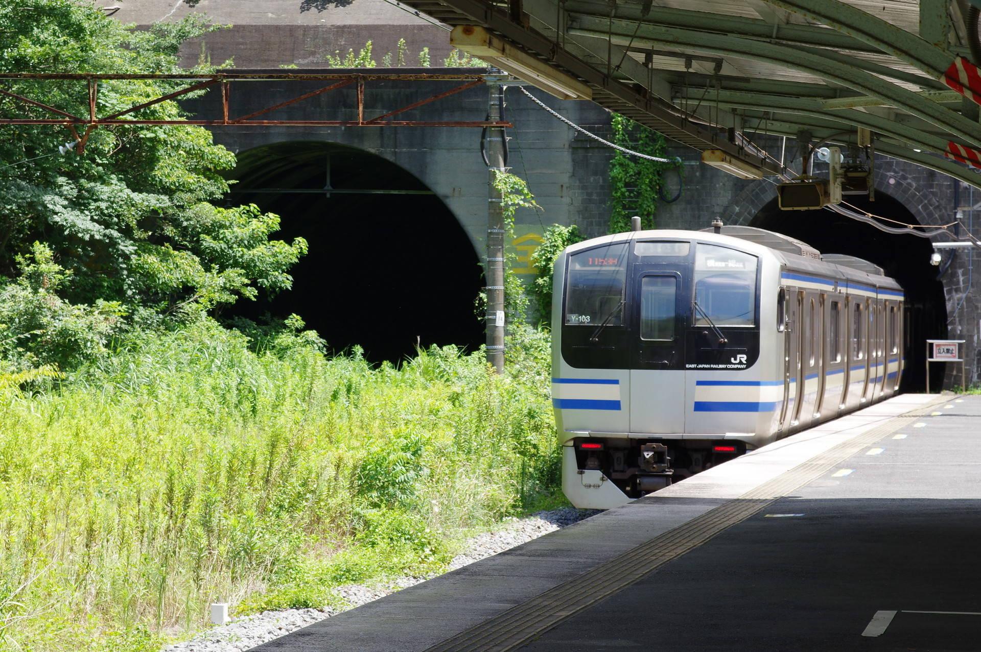 田浦駅ホーム先の七釜トンネルに入るE217系