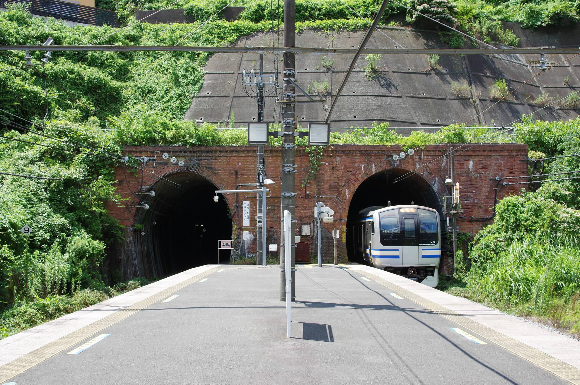 田浦トンネルを出てホームに入るE217系