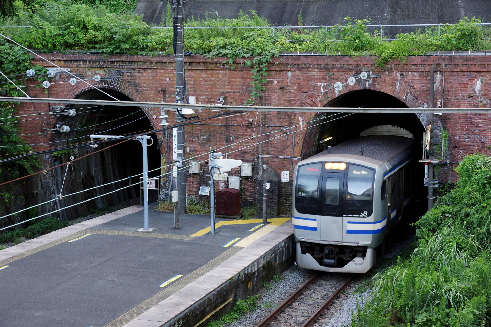 田浦トンネルを出てホームに入るE217系Y-34編成