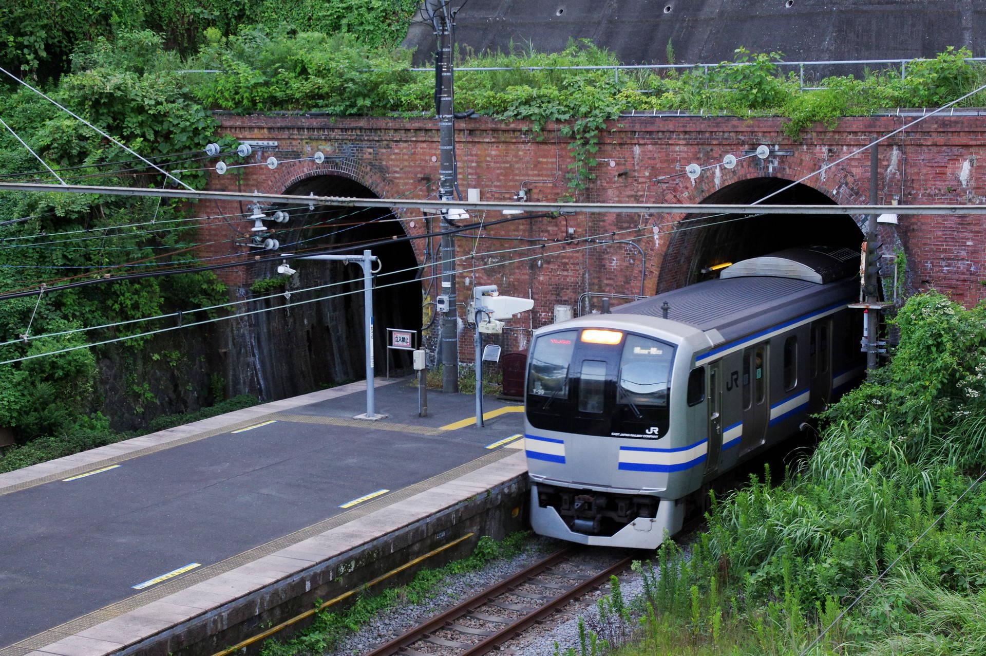 田浦トンネルを出てホームに入るY-39編成
