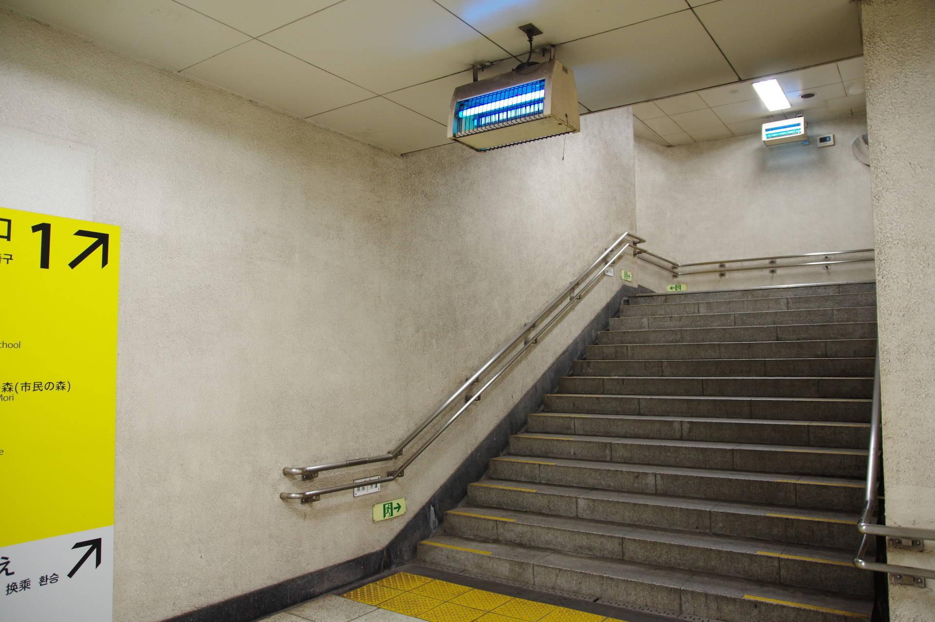青い灯具がある階段