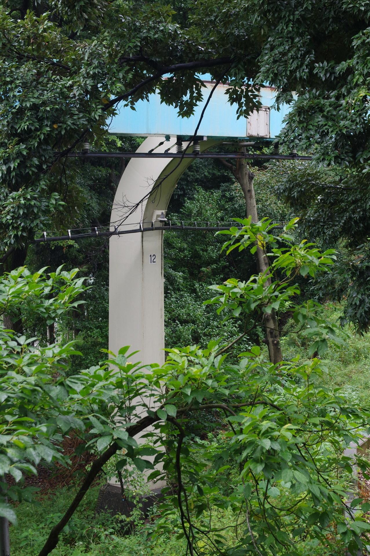 木々の間から見える12番橋脚