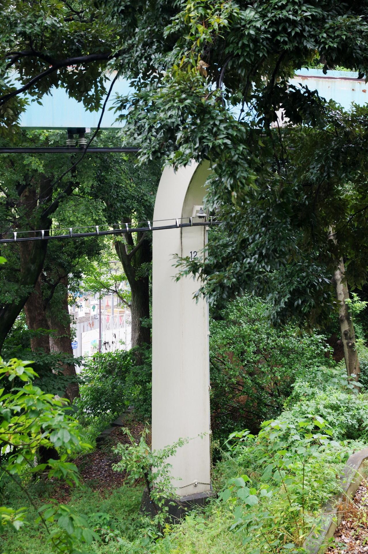 上部が木々に隠されている12番橋脚