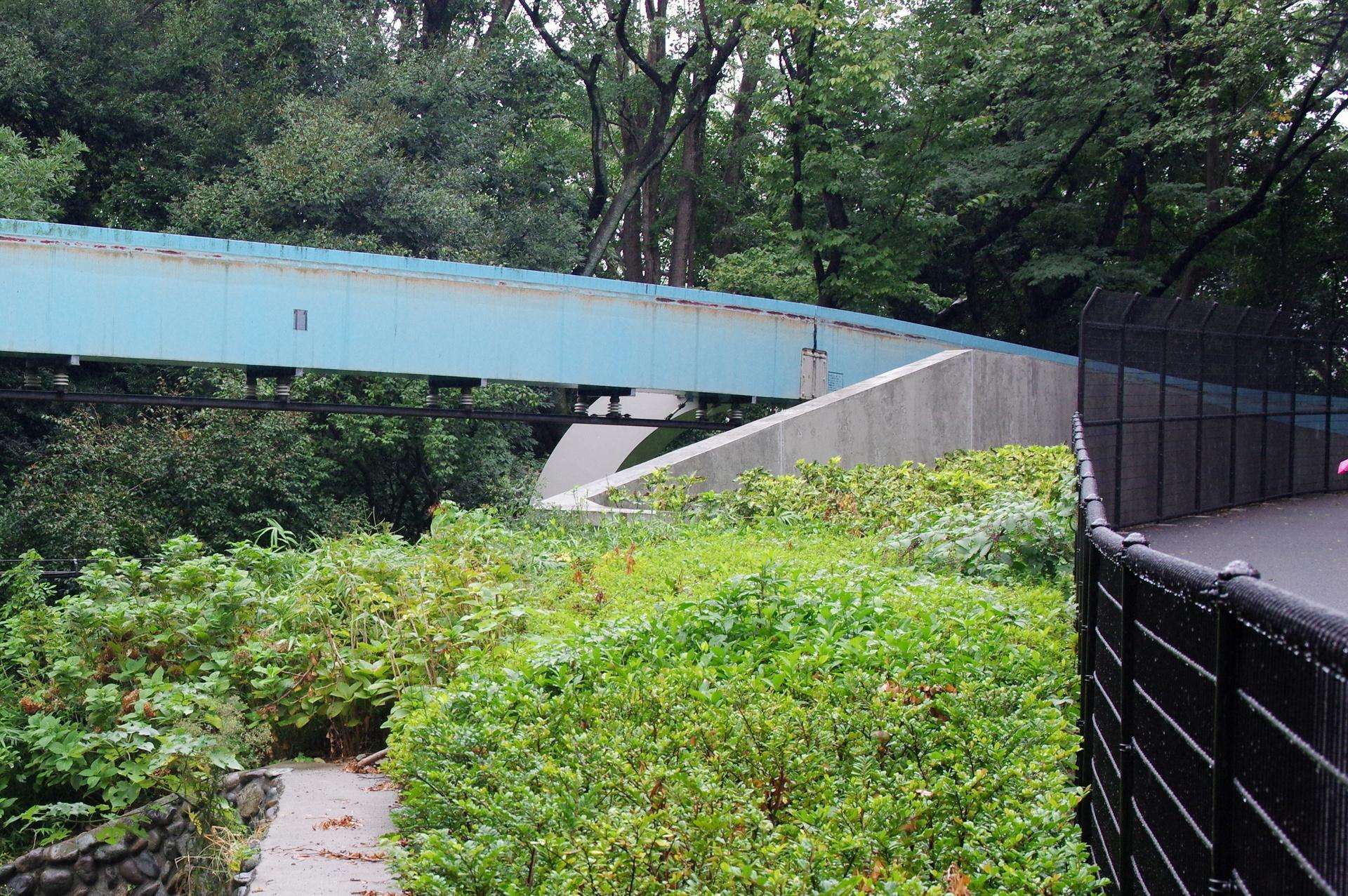 コンクリート壁の向こうにわずかに見える11番橋脚