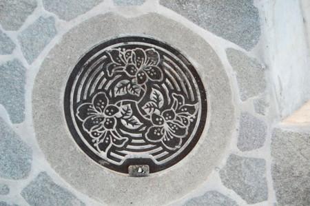 f:id:gzutetsu:20090201003143j:image