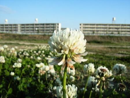 f:id:gzutetsu:20090329184632j:image