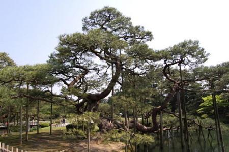 f:id:gzutetsu:20090404105822j:image