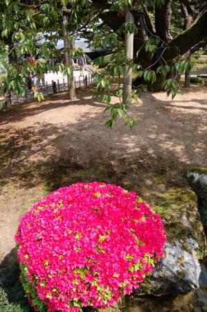 f:id:gzutetsu:20090404105823j:image