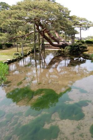 f:id:gzutetsu:20090404105824j:image