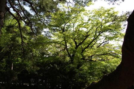 f:id:gzutetsu:20090404105847j:image