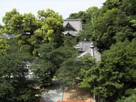 f:id:gzutetsu:20090517133426j:image