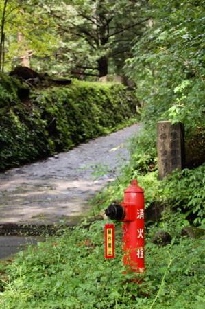 f:id:gzutetsu:20090614213048j:image