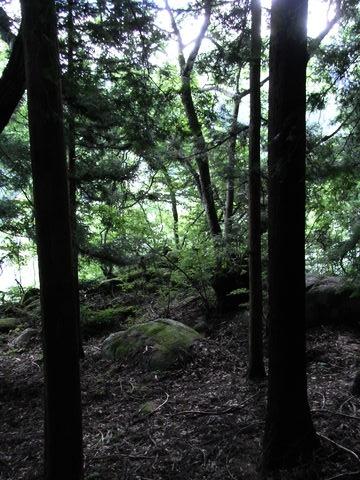 f:id:gzutetsu:20090812083055j:image