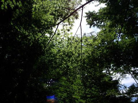 f:id:gzutetsu:20090812125801j:image