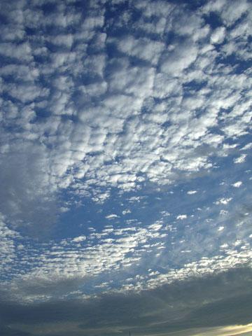 f:id:gzutetsu:20091020003027j:image