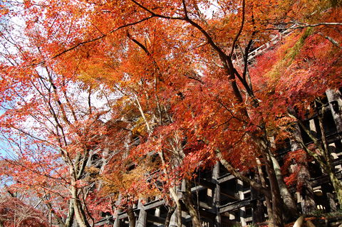 f:id:gzutetsu:20091206105537j:image