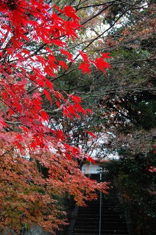 f:id:gzutetsu:20091206123804j:image