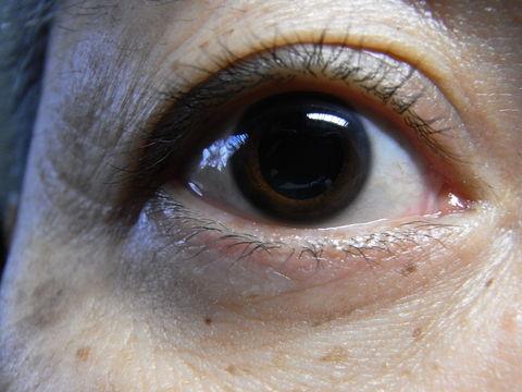 f:id:gzutetsu:20100206134208j:image