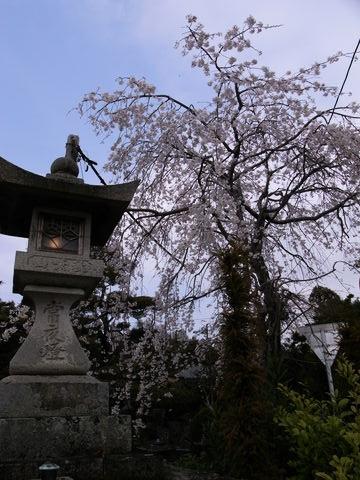 f:id:gzutetsu:20100320130747j:image
