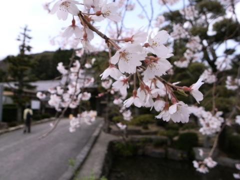 f:id:gzutetsu:20100320130858j:image