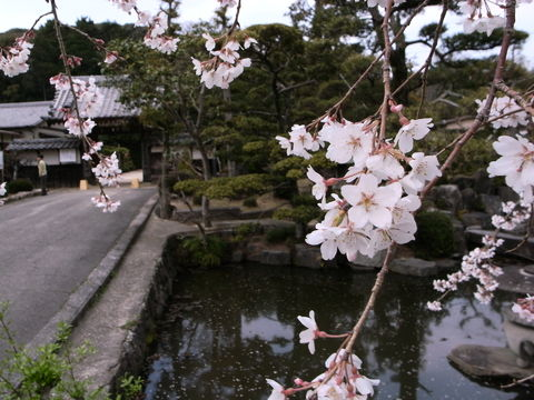 f:id:gzutetsu:20100320130906j:image