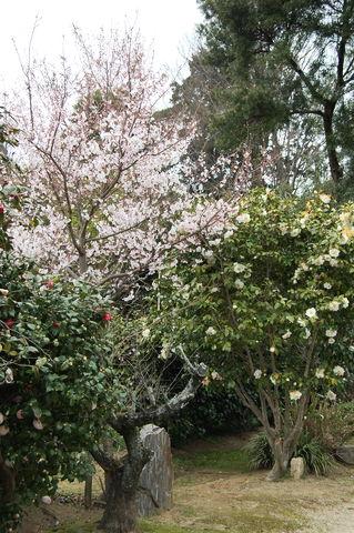 f:id:gzutetsu:20100320140646j:image
