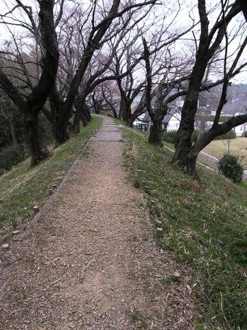 f:id:gzutetsu:20100320145852j:image
