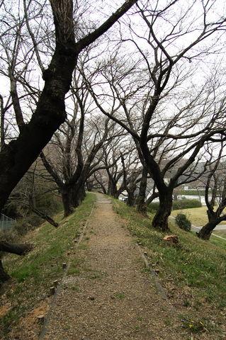 f:id:gzutetsu:20100320151436j:image