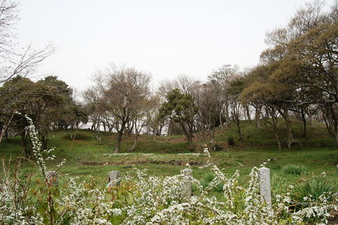 20100321110949