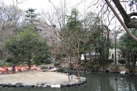 f:id:gzutetsu:20100328131716j:image